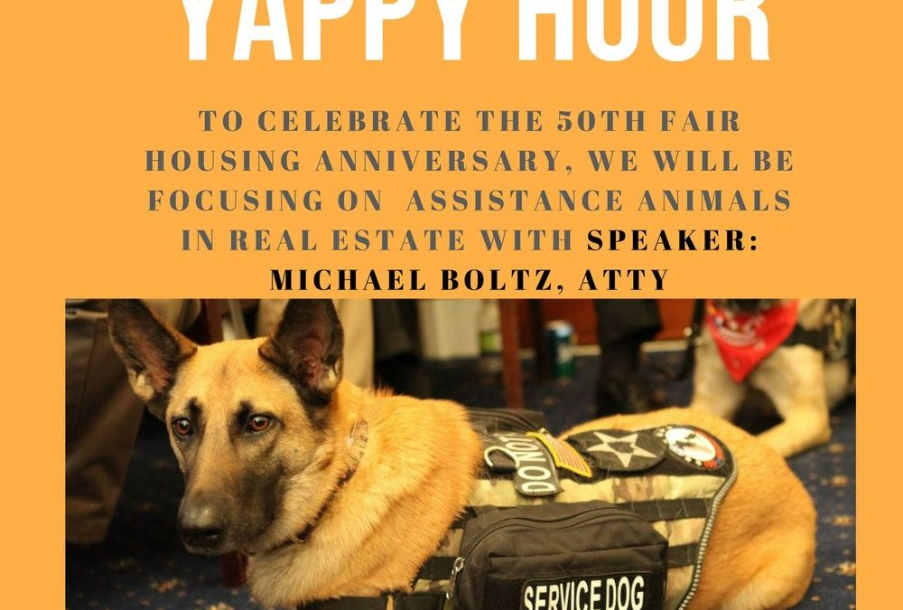 Lunch & Learn Aloha Yappy Hour